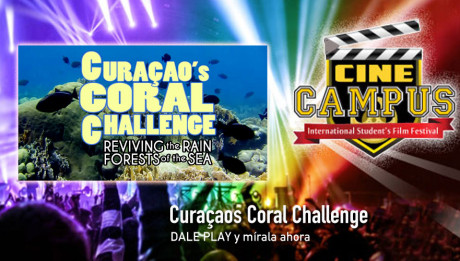 Curacaos Coral Challenge